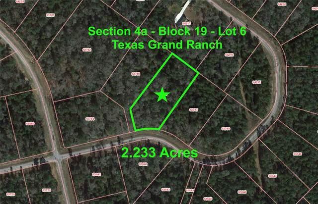 4a-19-6 Red Hawk Road, Huntsville, TX 77340 (MLS #76148935) :: Ellison Real Estate Team