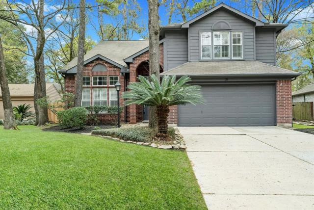 18 Grey Birch Place, The Woodlands, TX 77381 (MLS #76206594) :: The Heyl Group at Keller Williams