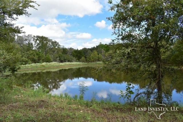 1365 Fm 2104, Smithville, TX 78957 (MLS #76227696) :: Fairwater Westmont Real Estate