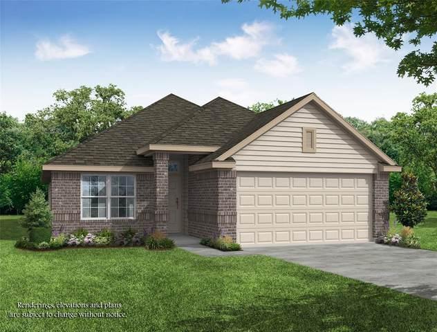 24807 Bastiani Canvas Lane, Katy, TX 77493 (MLS #76404420) :: Parodi Group Real Estate