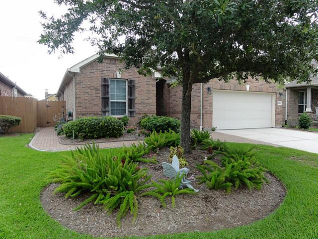 1664 Cecina Street, League City, TX 77573 (MLS #7641679) :: The SOLD by George Team