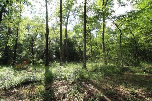 TBD Pine Creek Road, Hockley, TX 77447 (MLS #76483194) :: The SOLD by George Team