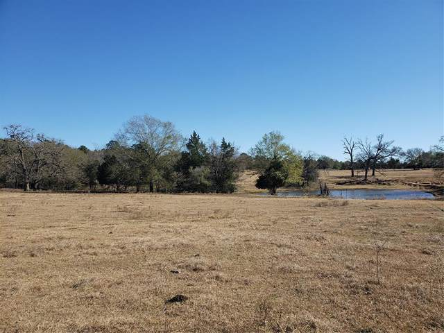 330 County Road 691, Teague, TX 75860 (MLS #76495632) :: Christy Buck Team