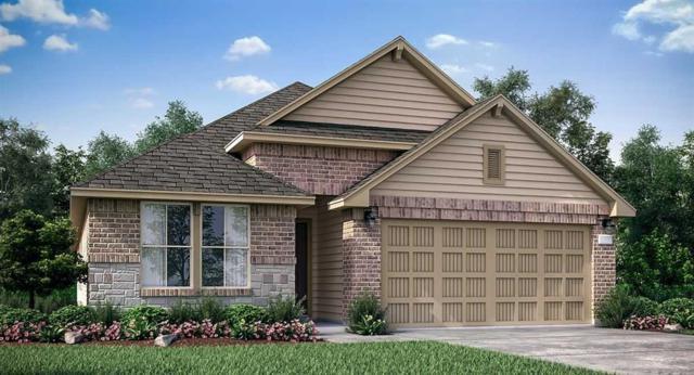 6731 Barrington Creek Trace, Katy, TX 77493 (MLS #76508040) :: Caskey Realty