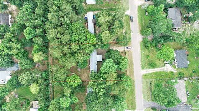 23945 Killer Bee Lane, New Caney, TX 77357 (MLS #765115) :: Caskey Realty