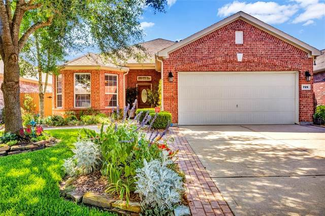 725 Rufina Street, League City, TX 77573 (MLS #7659305) :: Rose Above Realty