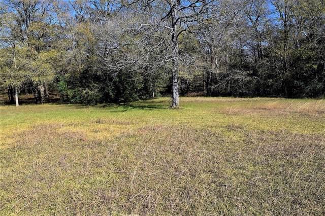 3 Elm, Hungerford, TX 77488 (MLS #7661363) :: Ellison Real Estate Team