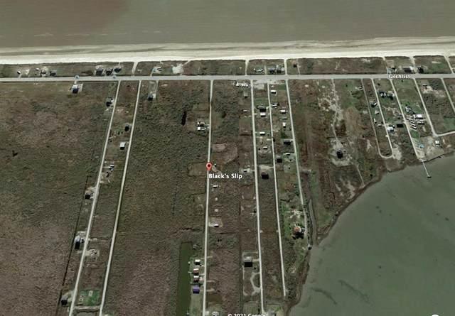 1054 Black's Slip, Gilchrist, TX 77617 (MLS #76668975) :: My BCS Home Real Estate Group