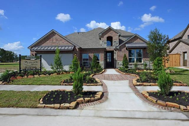 327 Black Walnut Court, Conroe, TX 77304 (MLS #76687034) :: The Heyl Group at Keller Williams