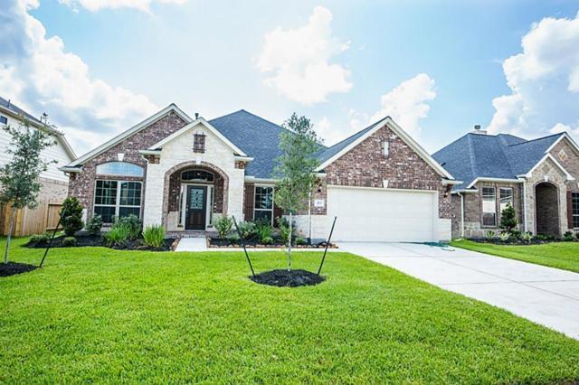 223 Summer Creek Lane, Rosenberg, TX 77469 (MLS #76717647) :: Magnolia Realty