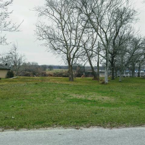 L 27 Selkirk Drive, Bay City, TX 77414 (MLS #76763069) :: Fairwater Westmont Real Estate