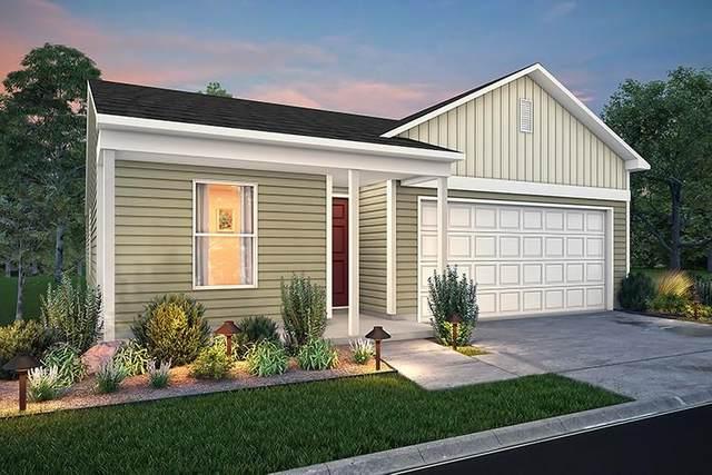 428 Goldenrod Drive, Livingston, TX 77351 (MLS #76770532) :: The Home Branch