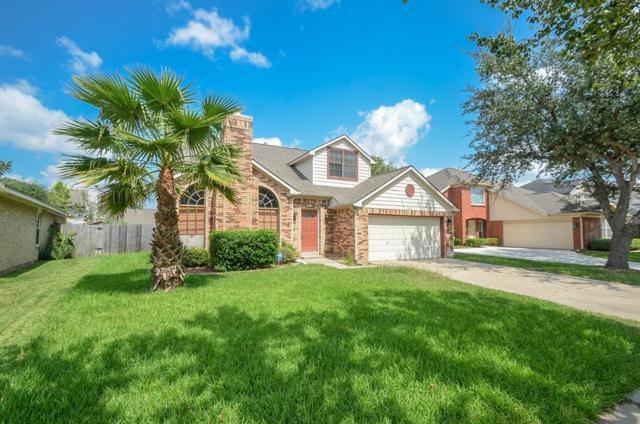 6511 Smoke Tree Lane, Sugar Land, TX 77479 (MLS #76840767) :: Christy Buck Team