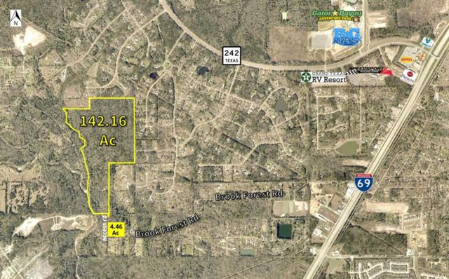 22187 Brook Forest Road, New Caney, TX 77357 (MLS #76857056) :: Green Residential