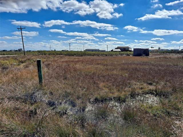23 Albatross, Sargent, TX 77414 (MLS #76914877) :: Caskey Realty