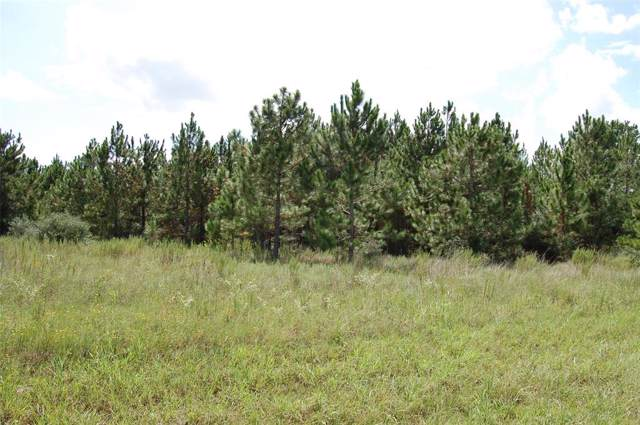 Lot W/2 10 & 11 Pine Ridge Road, Waller, TX 77484 (MLS #76955962) :: The Jill Smith Team