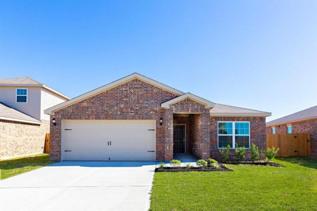 1017 Thunder Field Drive, Katy, TX 77493 (MLS #7702642) :: The Heyl Group at Keller Williams