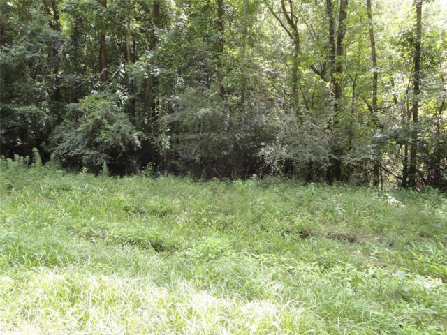 12465 Royal Creek Road, Conroe, TX 77303 (MLS #77042623) :: Giorgi Real Estate Group