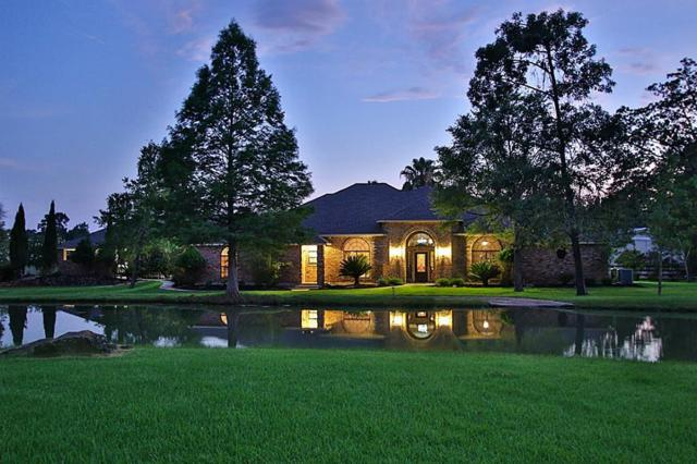 36733 High Chaparral, Magnolia, TX 77355 (MLS #77075701) :: The SOLD by George Team