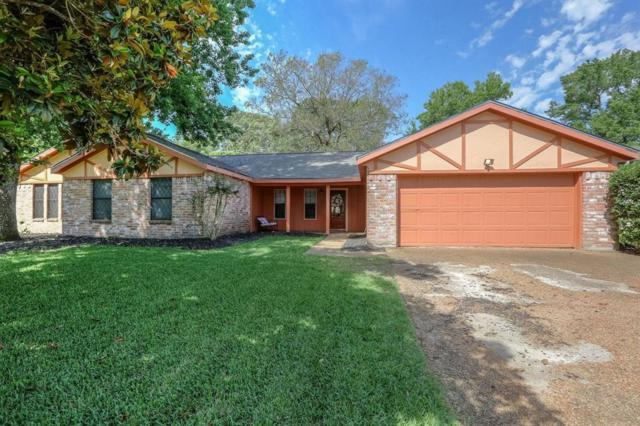19515 Shady Cove Lane, Humble, TX 77346 (MLS #771152) :: The SOLD by George Team