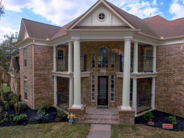 13902 Wilde Forest Court, Sugar Land, TX 77498 (MLS #77125653) :: Connect Realty