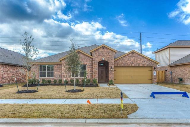 6910 Arcadia Meadow, Richmond, TX 77407 (MLS #77127605) :: Team Sansone