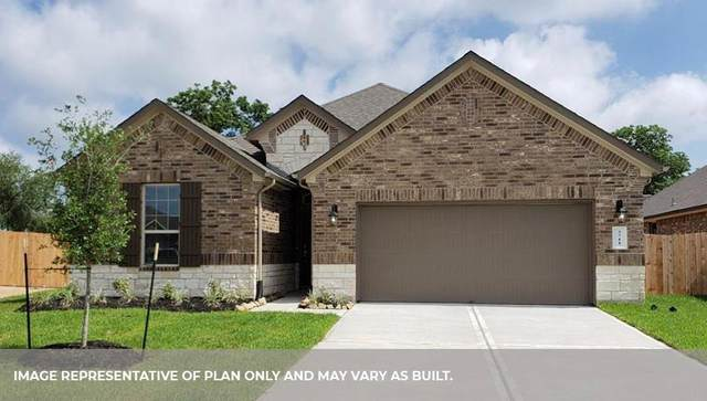 8527 Golden Field, Rosenberg, TX 77469 (MLS #77209159) :: The Queen Team