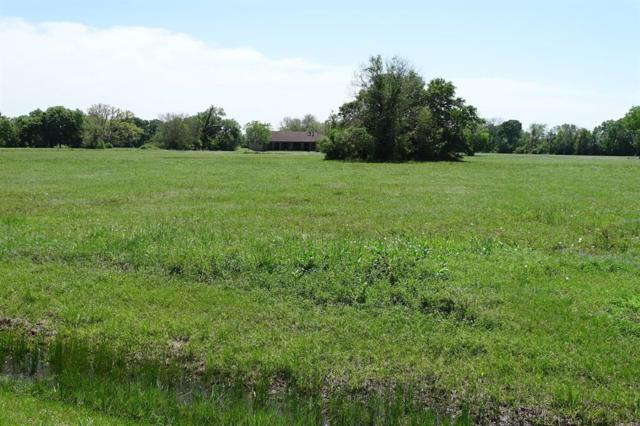 702 Lily Lane, Rosharon, TX 77583 (MLS #77241331) :: The SOLD by George Team