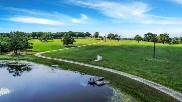 13426 County Road 446, Navasota, TX 77868 (MLS #77286802) :: NewHomePrograms.com LLC