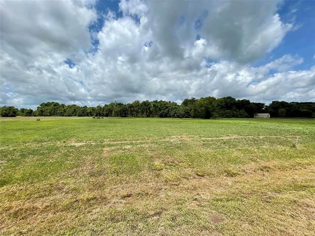 21103 Chenango Lake Drive, Angleton, TX 77515 (MLS #77300489) :: My BCS Home Real Estate Group