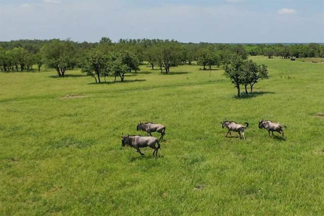 9141 County Road 3477, Millersview, TX 76858 (MLS #77314753) :: Bray Real Estate Group