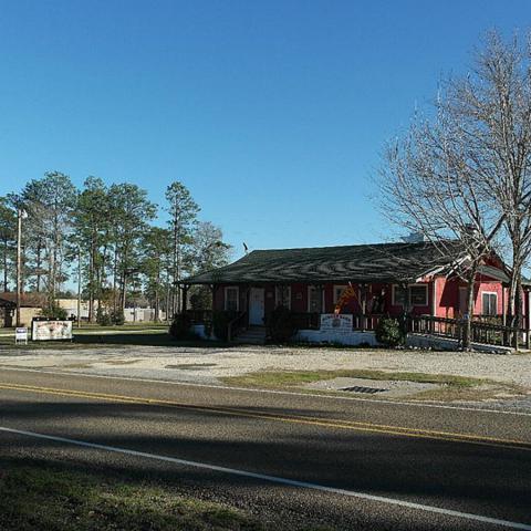 8990 Fm 1276, Livingston, TX 77351 (MLS #77331632) :: Giorgi Real Estate Group