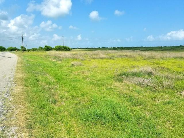 39 County Road 206, Sargent, TX 77414 (MLS #77336007) :: The Sansone Group