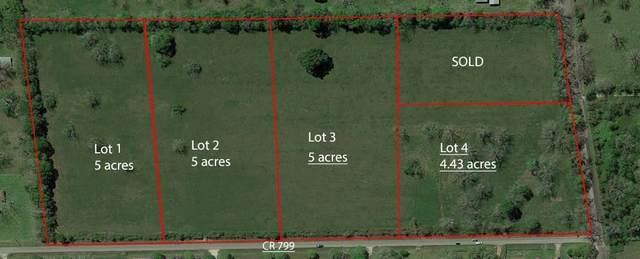 lot 3 County Road 799 SW, Brazoria, TX 77422 (MLS #77385539) :: Green Residential