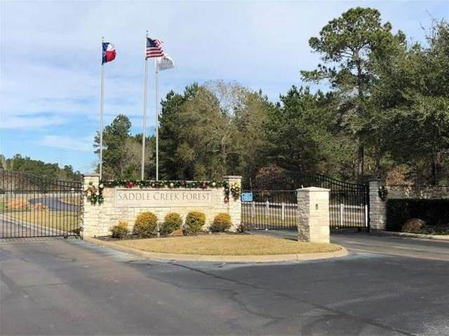 27700 E Stallion Lane, Waller, TX 77484 (MLS #77402226) :: The SOLD by George Team