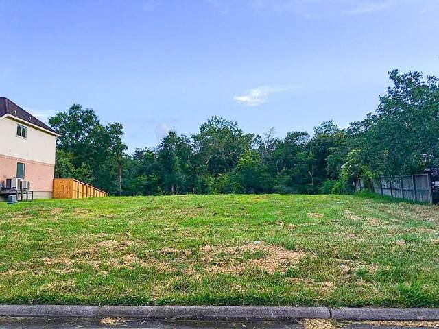 5494 Appleblossom Lane, Friendswood, TX 77546 (MLS #77457033) :: The SOLD by George Team