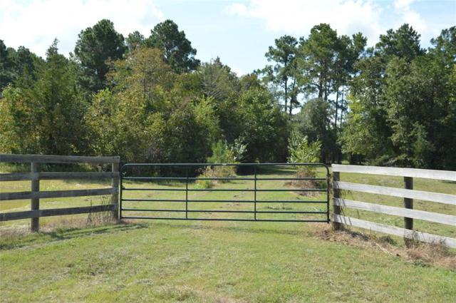 253 N Morgan Road, Huntsville, TX 77340 (MLS #77504041) :: The Home Branch