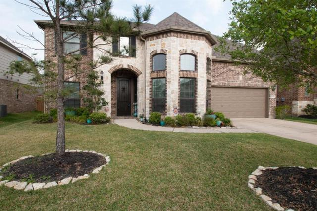 9923 Clear Diamond Drive Drive, Rosharon, TX 77583 (MLS #77512674) :: The SOLD by George Team
