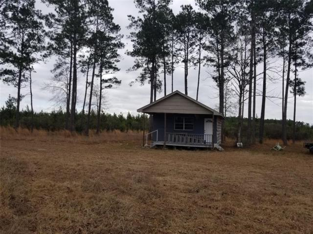 TBD County Rd 4494, Hillister, TX 77624 (MLS #77556375) :: Fairwater Westmont Real Estate