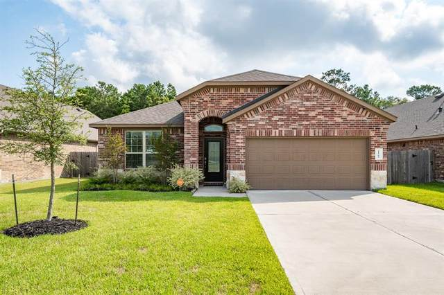21505 Elk Haven Lane, Porter, TX 77365 (MLS #77584685) :: The Freund Group