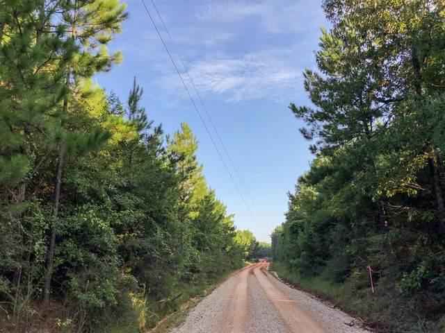 00 County Line Road, Livingston, TX 77351 (MLS #77651247) :: CORE Realty