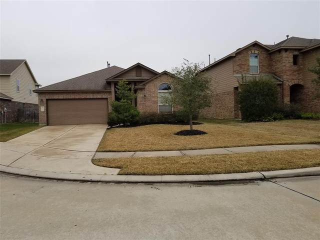 11618 Lantana Reach Drive, Richmond, TX 77406 (MLS #77717634) :: The Parodi Team at Realty Associates