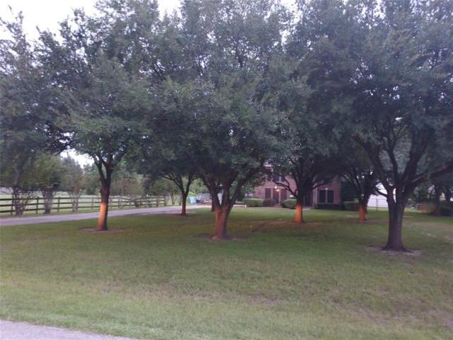2025 Saddlehorn Trail, Katy, TX 77494 (MLS #77731956) :: Magnolia Realty