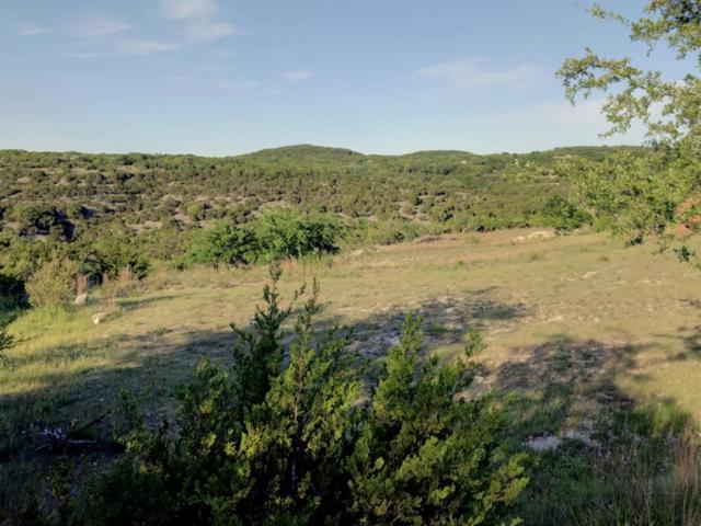 344 Stacey Ann Cove, Dripping Springs, TX 78620 (MLS #77767180) :: The Collective Realty Group