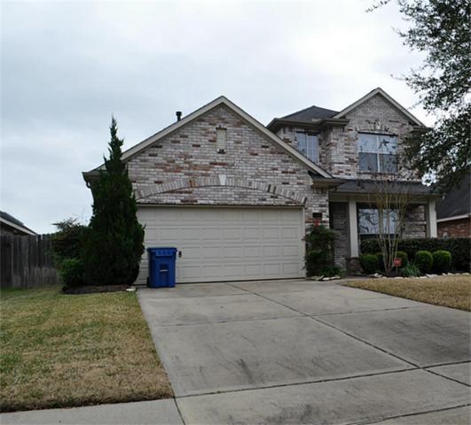 210 Briar Trace Lane, Richmond, TX 77406 (MLS #77768635) :: The Heyl Group at Keller Williams