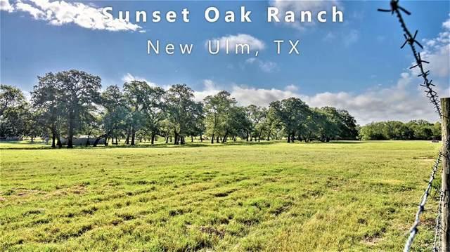 2230 Farm To Market 1291, New Ulm, TX 78950 (MLS #77820381) :: Guevara Backman