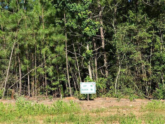 3-15-13 Fire Sky Road, Huntsville, TX 77340 (MLS #77876062) :: Fairwater Westmont Real Estate