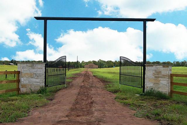 0-A Guyler Road, Simonton, TX 77476 (MLS #77903331) :: Connect Realty