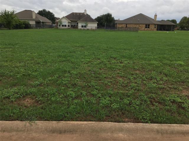 103 Egret Drive, Bastrop, TX 78602 (MLS #77948692) :: Texas Home Shop Realty