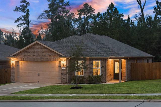 20915 Bauer Creek Drive, Hockley, TX 77447 (MLS #78064231) :: The Heyl Group at Keller Williams